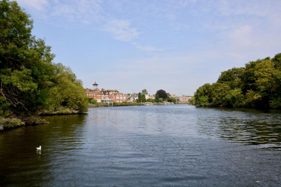 Images for Swan Island, Strawberry Vale, Twickenham EAID:Miles&Bird BID:Miles & Bird